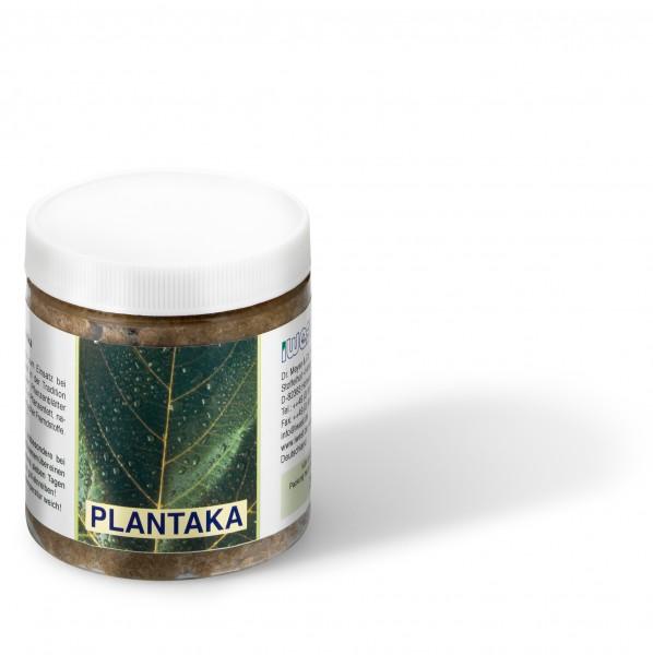 Plantaka